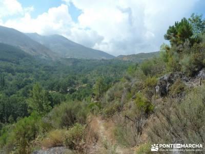 Valle del Alto Alberche;rutas senderismo sierra guadarrama senderismo sierra guadarrama rutas para h